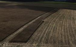 Trator trabalha em plantação de trigo no Pará. 23/04/2013 REUTERS/Nacho Doce