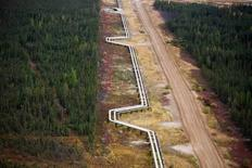 Pipelines carrying steam and oil run at the Suncor Firebag in-situ oil sands operations near Fort McMurray, Alberta, in this file photo from September 17, 2014.  REUTERS/Todd Korol/Files