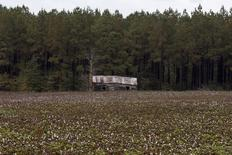 An empty and decaying home sits next to a field of cotton in Danville, Georgia October 28, 2015.  REUTERS/Brian Snyder
