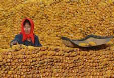 La Chine envisage de baisser pour la deuxième année de suite le prix du maïs, afin de réduire les réserves du pays, les plus importantes au monde, et relancer la demande en provenance des transformateurs de céréales, /photo d'archives/REUTERS