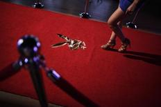 A young woman walks towards a stage to be photographed while applying for a job as a Playboy bunny during a casting in Monterrey August 7, 2013. PREUTERS/Daniel Becerril