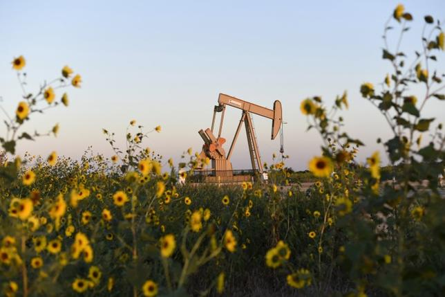 A pump jack is seen near sunflowers in Guthrie, Oklahoma in a September 15, 2015 file photo. REUTERS/Nick Oxford/Files