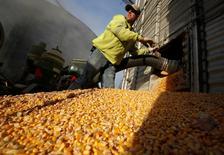 Un trabajador vacía maíz en un granero de la compañía DeLong, en Minooka, Illinois, Estados Unidos. 24 de septiembre de 2014. Los inventarios mayoristas en Estados Unidos apenas subieron en marzo, cuando las ventas registraron su mayor incremento en casi un año, lo que sugiere que tendrán un impacto bajo en la estimación de crecimiento económico del primer trimestre. REUTERS/Jim Young