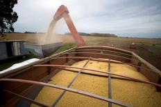 Una cosechadora de granos funcionando en un sojal en Estación Islas, Argentina, abr 3, 2010. El Departamento de Agricultura de Estados Unidos (USDA, por su sigla en inglés) mantuvo el miércoles sin cambios sus cálculos para las cosechas de soja, maíz y trigo del ciclo 2016/17 de Argentina.  REUTERS/Enrique Marcarian