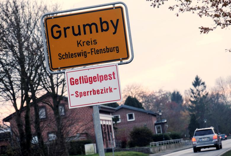 A car drives past the town sign in the northern German village of Grumby, Germany, with the ''Bird Flu - off limits area'' warning notice November 12, 2016. REUTERS/Sebastian Iwersen/Nordpresse