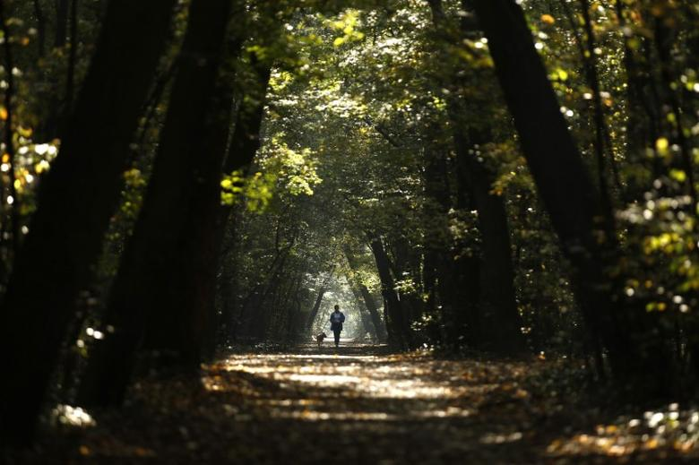 A woman jogs with her dog through a park during a sunny autumn day in central Sofia October 14, 2014.  REUTERS/Stoyan Nenov