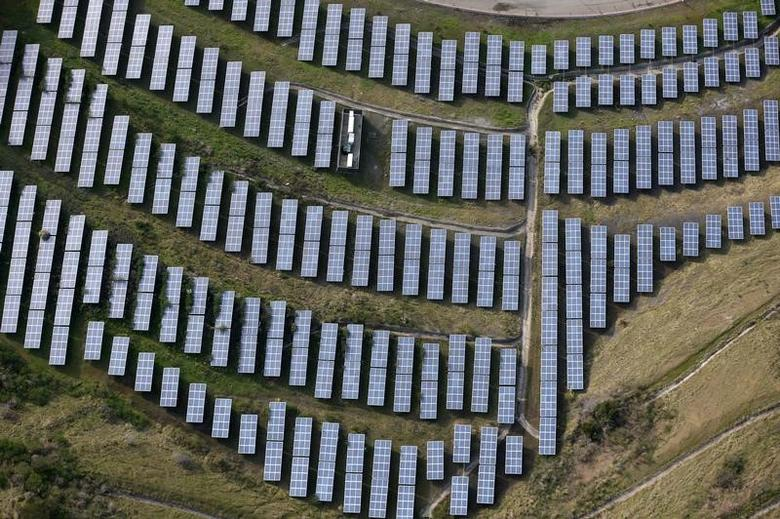 An array of solar panels are seen in Oakland, California, U.S. December 4, 2016. REUTERS/Lucy Nicholson