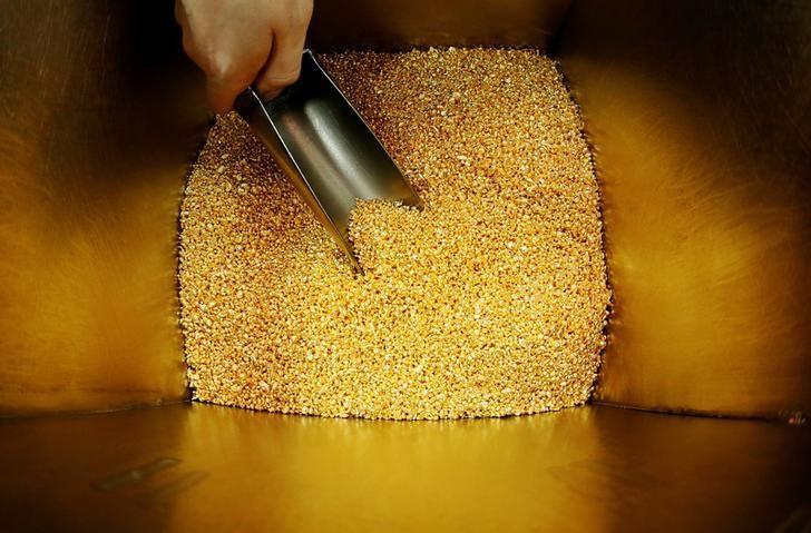 An employee takes granules of 99.99 percent pure gold before packing them at the Krastsvetmet non-ferrous metals plant in Krasnoyarsk, Russia, October 24, 2016.  REUTERS/Ilya Naymushin/File Photo