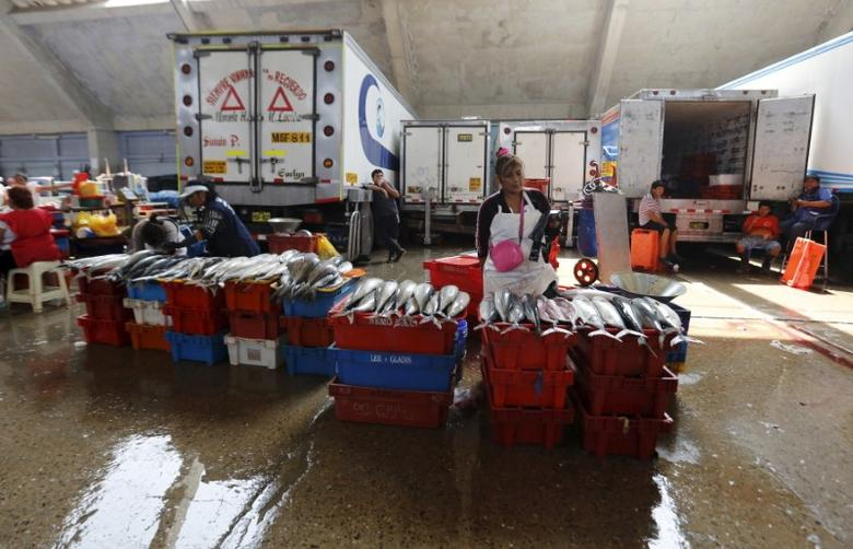FILE PHOTO: A woman sells fish at the fish market of Villa Maria del Triunfo, on the outskirts of Lima, March 30, 2015. REUTERS/Mariana Bazo