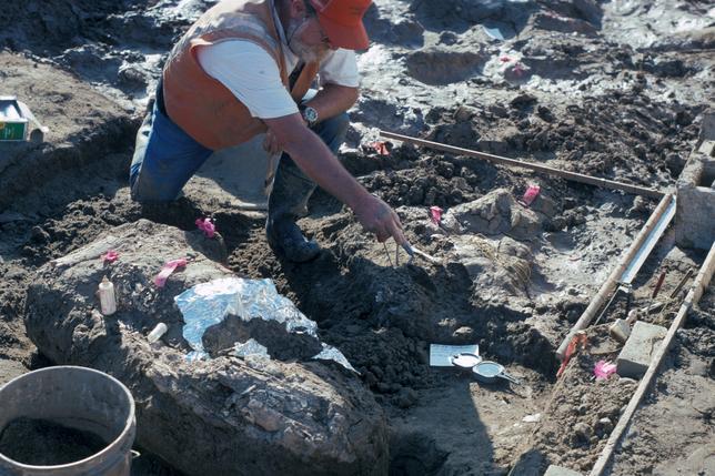 4月26日、科学者らによると、米カリフォルニア州サンディエゴ郡で石器と有史以前の大型哺乳類「マストドン」の骨が折れた状態で発掘され、これまでに分かっているよりはるか以前の13万年以上前に、人類が米州に到達していた可能性が示されたという。発掘の結果は、科学誌ネイチャーに掲載された。提供写真は発掘現場の様子(2017年 ロイター/San Diego Natural History Museum)