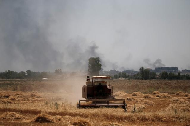 Smoke billows from the positions of the Islamic State militants as a harvester gathers the wheat crop from a field in western Mosul, Iraq June 19, 2017. REUTERS/Alkis Konstantinidis