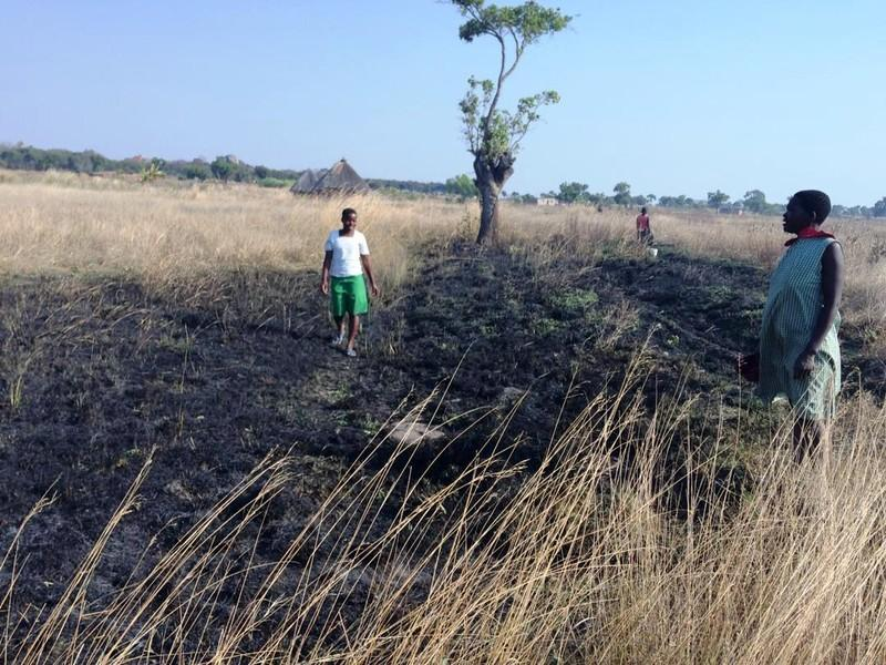Zimbabwe's farmers feel the heat of fires – and of price hikes