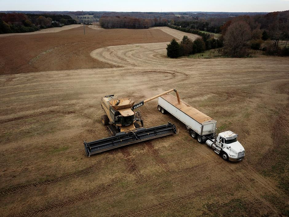 Exclusive: China makes first big U S  soybean purchase since Trump