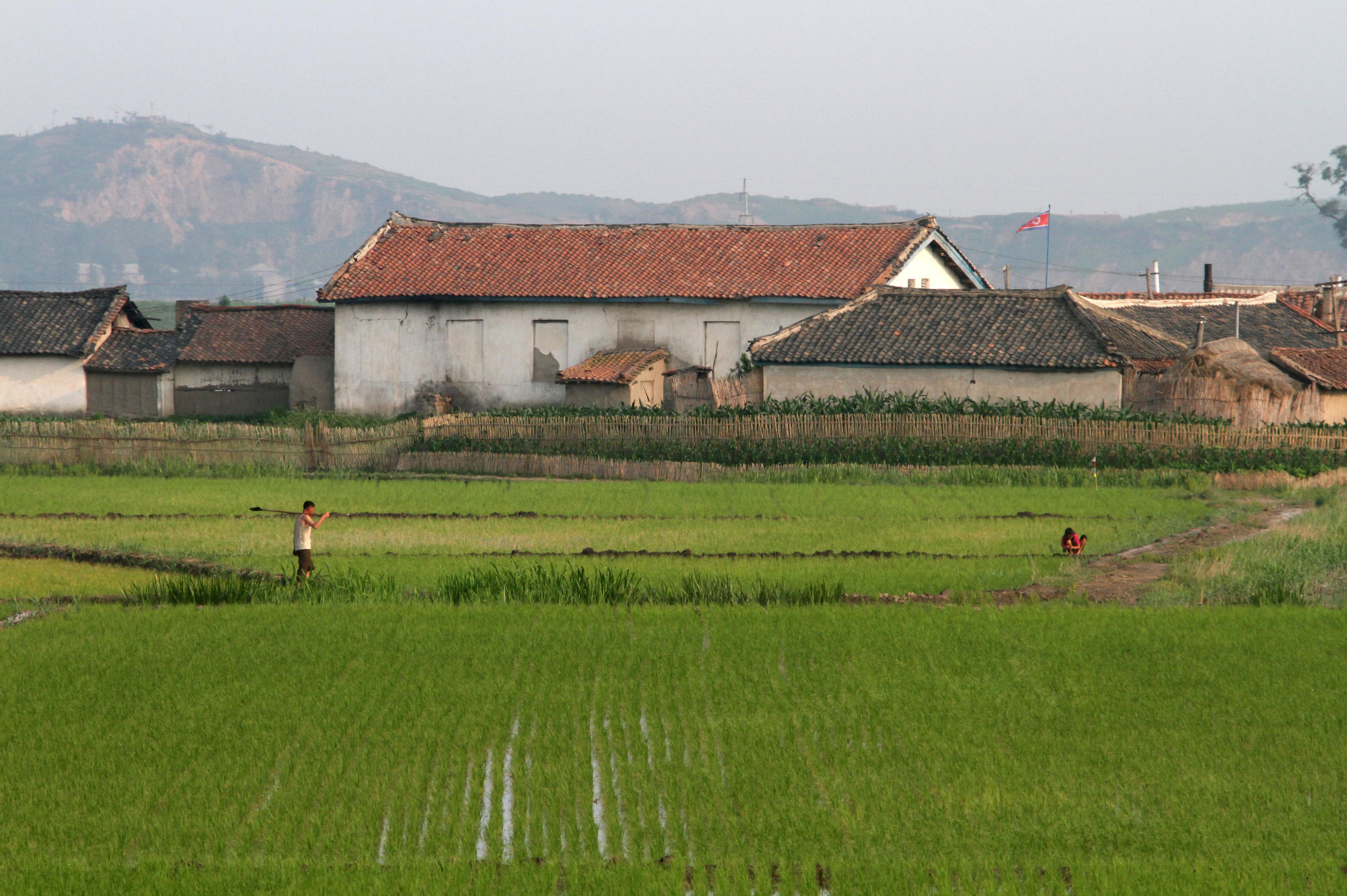 North Korea warns of food crisis, slashes rations before next leaders' summit