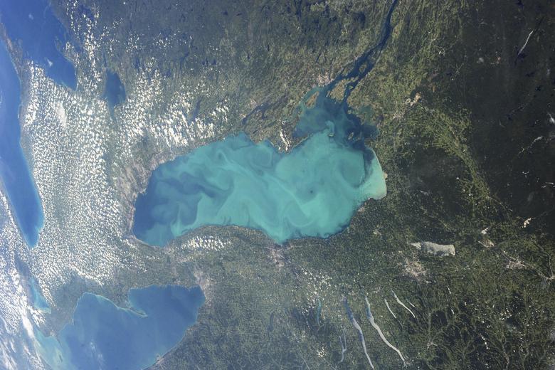 A finales del verano, el plancton florece en gran parte del lago Ontario, uno de los Grandes Lagos de América del Norte, en esta fotografía tomada por un astronauta en la Estación Espacial Internacional. Las cianobacterias microscópicas, o algas azul-verdes, pueden alcanzar concentraciones tan grandes y colorear el agua hasta tal punto que el cambio es visible desde la órbita. REUTERS / NASA