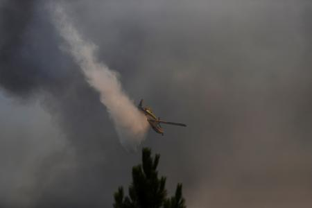 Police launch investigation as wildfire sweeps central Portugal