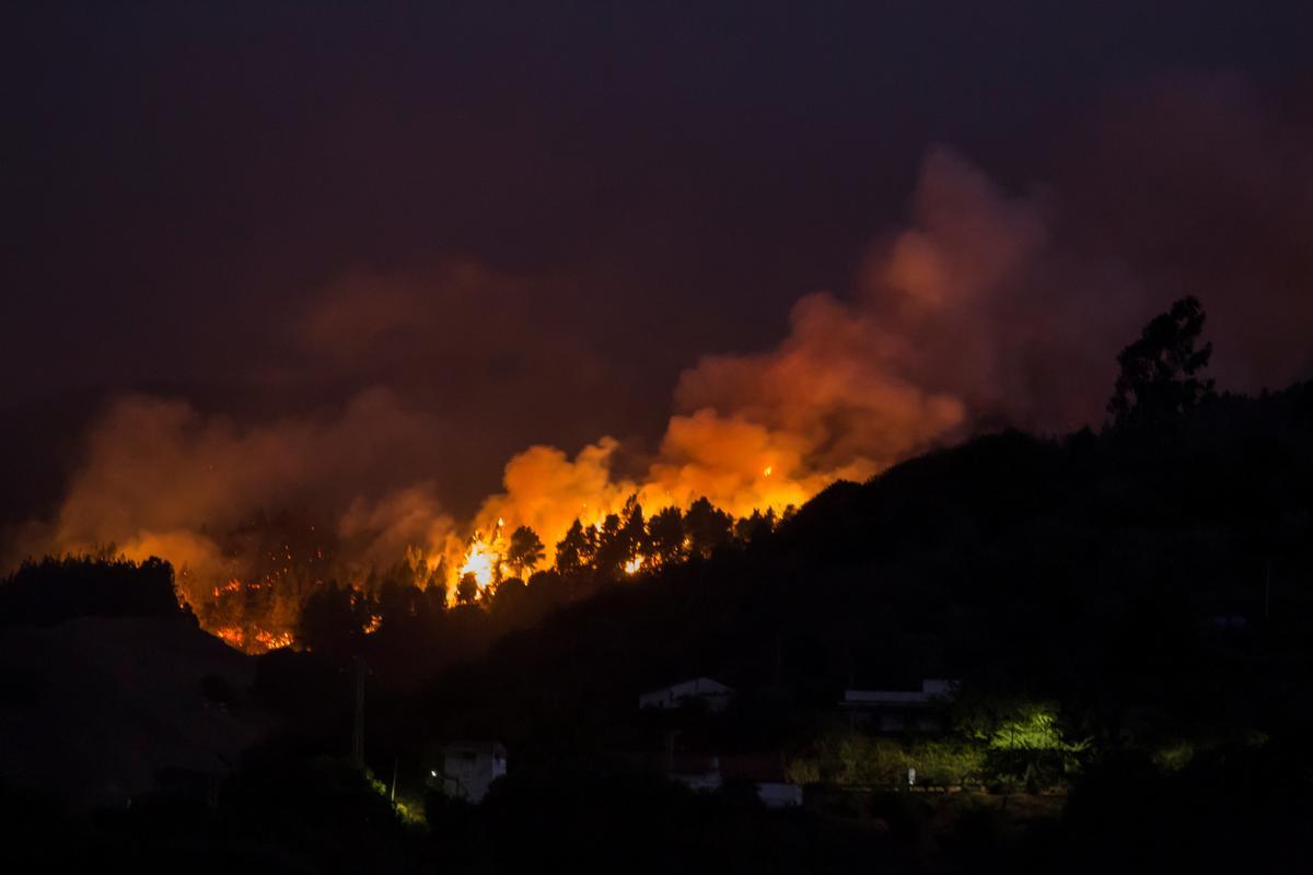 Die owerhede van die Kanariese Eilande ontruim 4,000 namate 'n veldbrand versprei