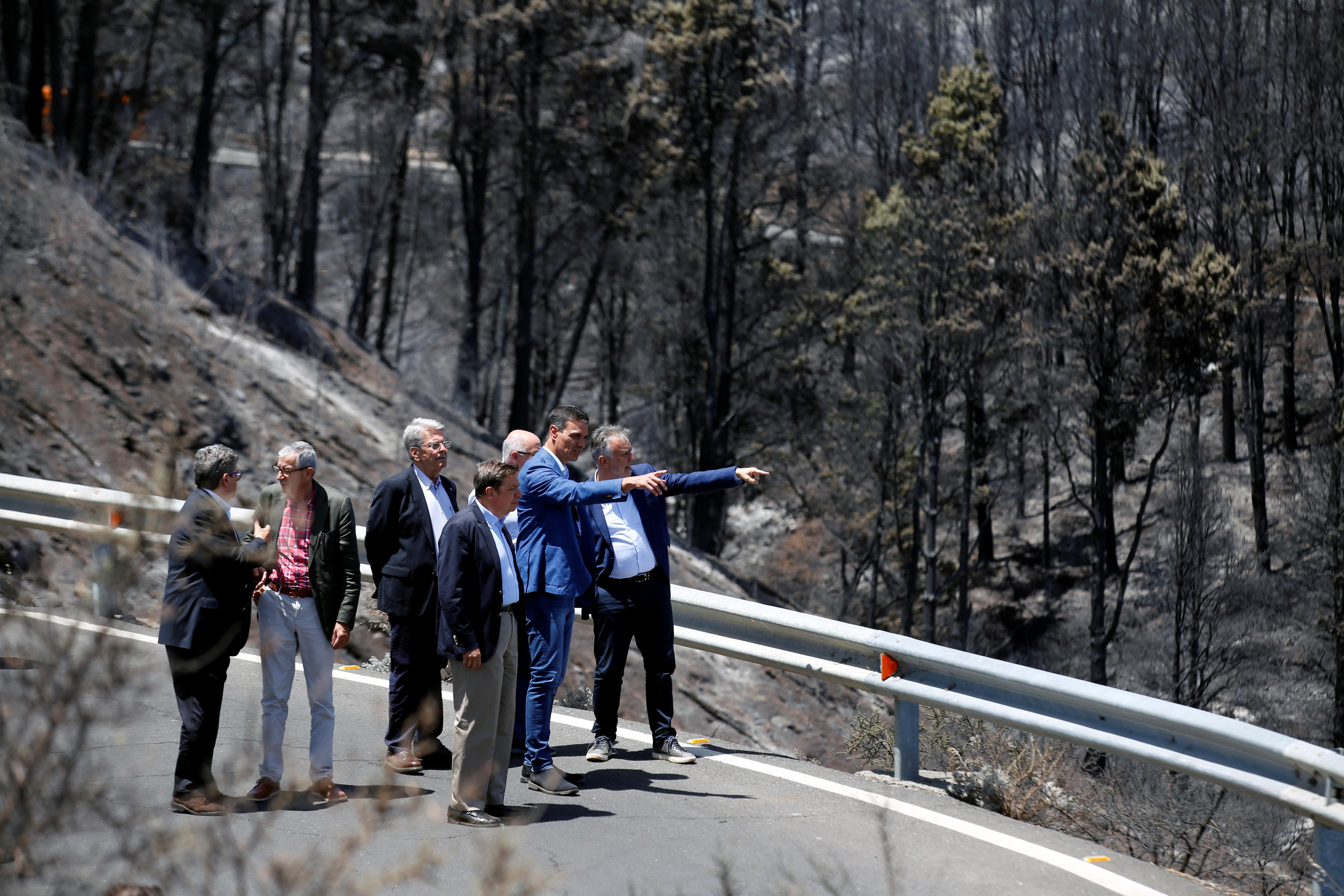 Canary Islands wildfire stable but continues to burn, acting PM says