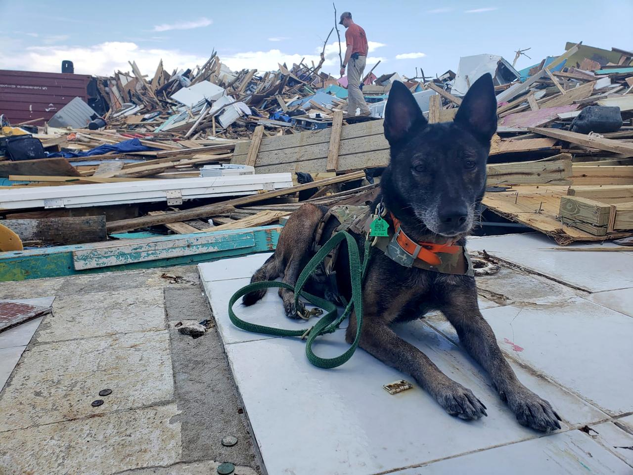 With dogs and spray paint, crews in grim search for Dorian's