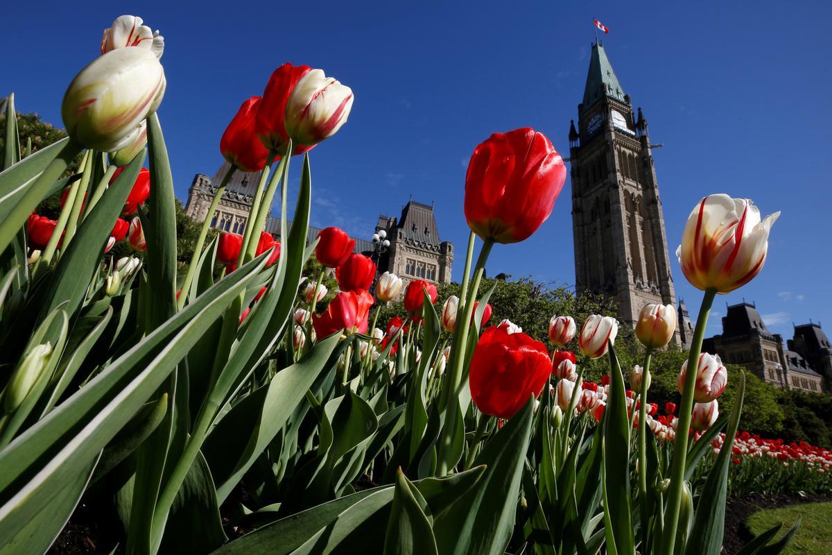 Factbox: Besonderhede oor die federale verkiesing in Kanada