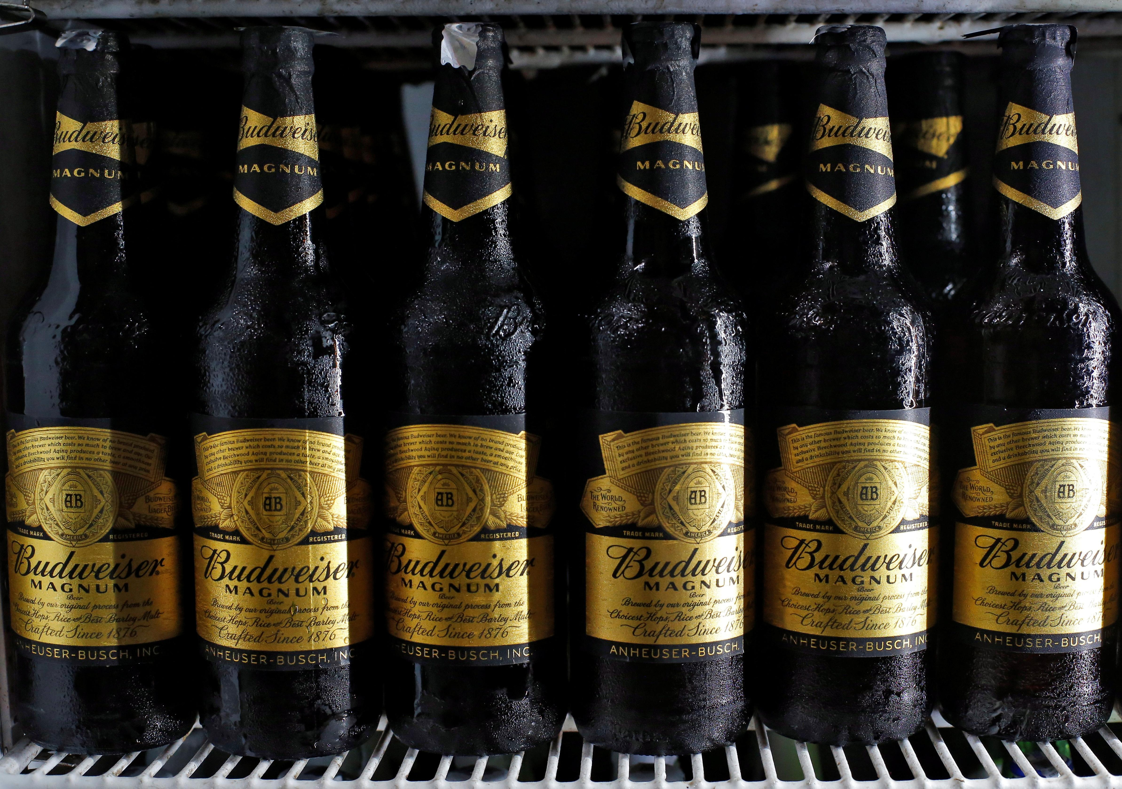 AB InBev Asia unit's strong Hong Kong debut to boost IPO outlook...