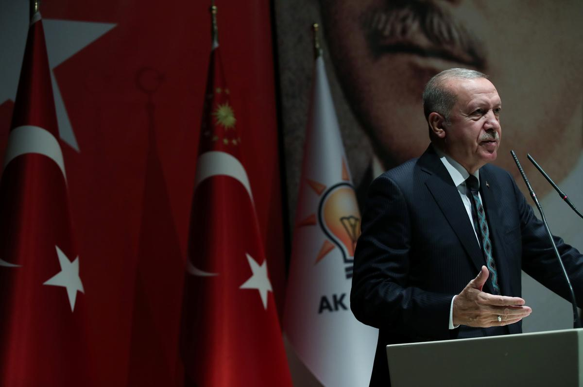 Islamic State will not have presence in northeast Syria: Erdogan