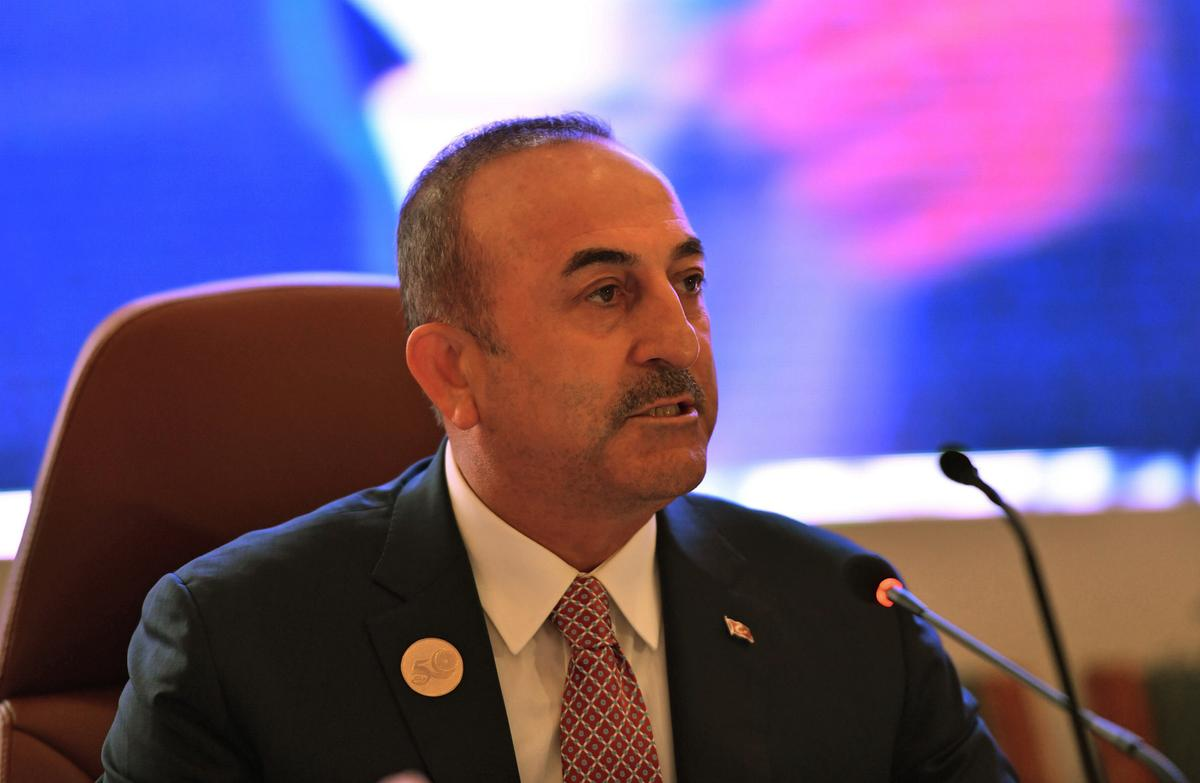 Turkish offensive will not go beyond 30 km into Syria: foreign minister