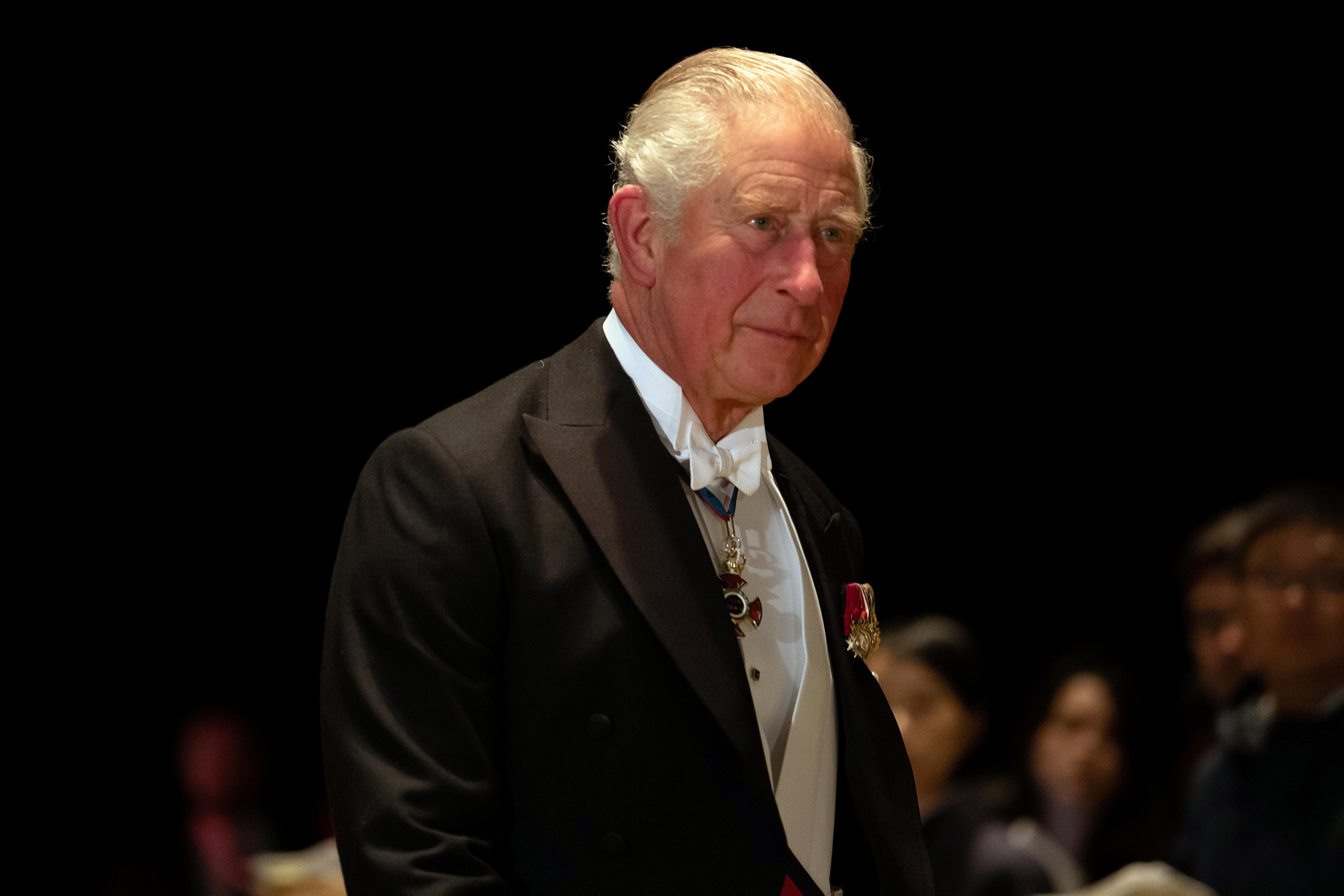 Prince Charles tells financiers: invest your trillions to save the...