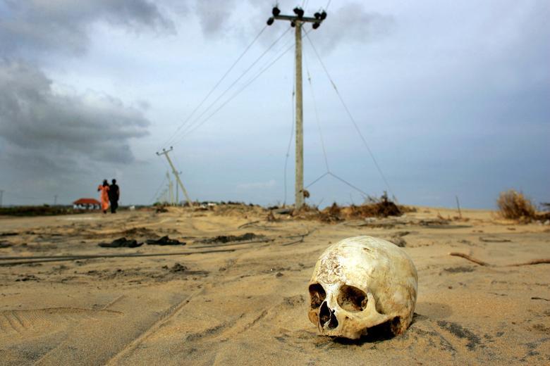 Una calavera desplazada de su ataúd que fue desenterrada por el tsunami yace en la carretera en Sinnamunhattuvaram en la costa este de Sri Lanka el 3 de enero de 2005. REUTERS / Kieran Doherty