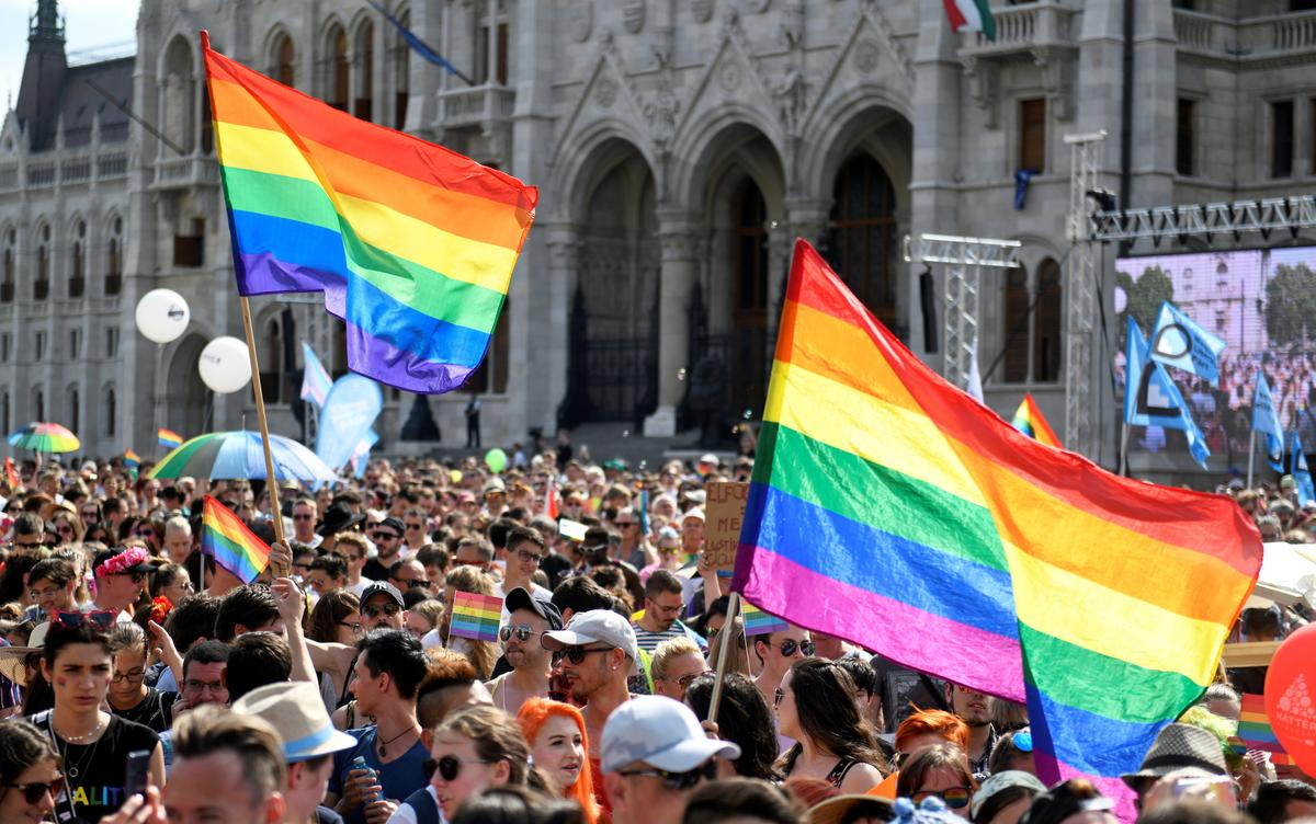 Gays in Hungary facing increased government hostility: rights group