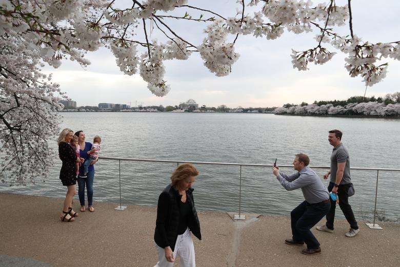 People flock to the Tidal Basin to see the cherry blossoms in Washington, March 20, 2020. REUTERS / Leah Millis