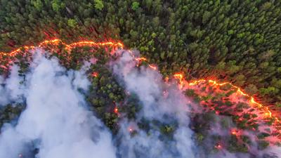 Wildfires rage across Siberia