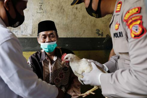 Live chickens, lottery tickets and marijuana offered as vaccine incentives
